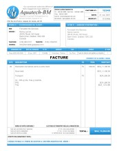 b.4_detaillant_de1_facture1_francais_sage.50_simple.comptable