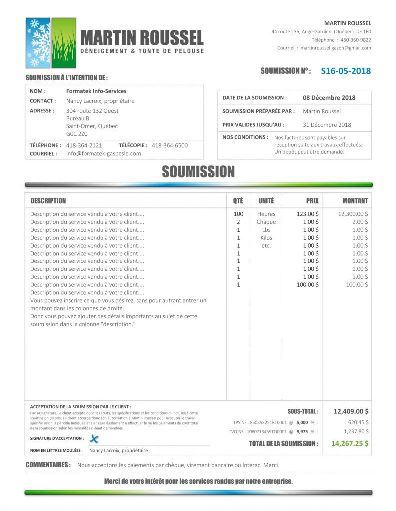 PDF DYNAMIQUE_INTERACTIF_C2_SERVICES_SE4_SOUMISSION_MARTIN ROUSSEL-2