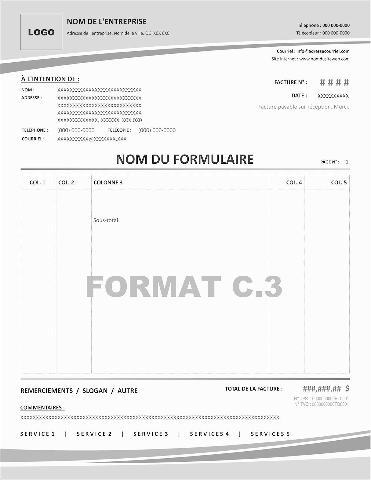 FORMAT C.3